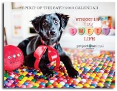 Jersey Lauren | Dylan Lauren | New Jersey Pet Photographer | Sato Calendar